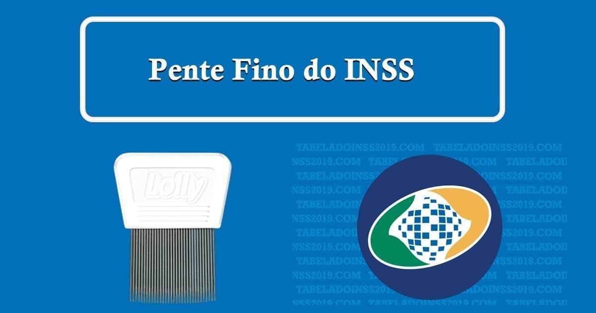 Resultado de imagem para INSS: PENTE-FINO PODE INICIAR CONVOCAÇÕES AINDA NESTE MÊS